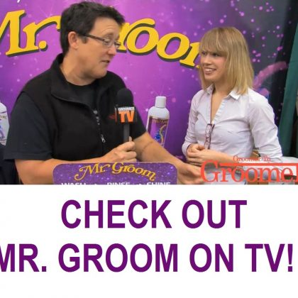 Groomer TV Screenshot updated2